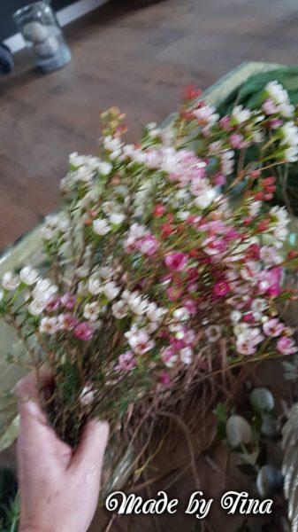 Blütenzweige Kranz Advent
